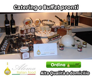 banner300alema-catering